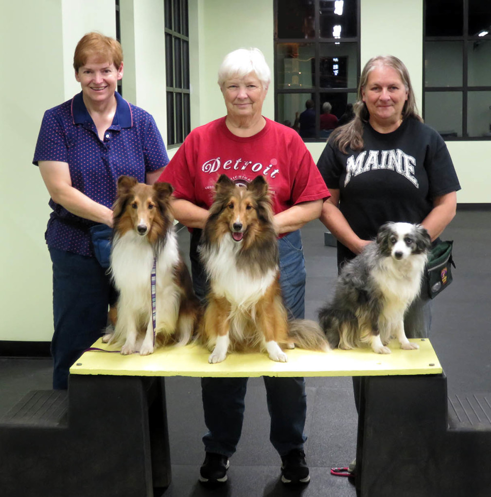 Three dogs and their handlers have earned their Trickster titles.
