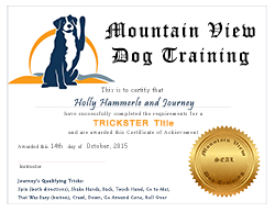 Trickster Title Certificate from Mountain View Dog Training